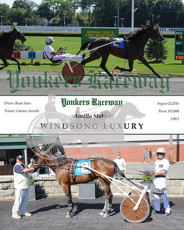 20160823 Race 9- Windsong Luxury