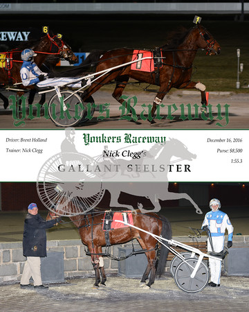20161216 Race 1- Gallant Seelster