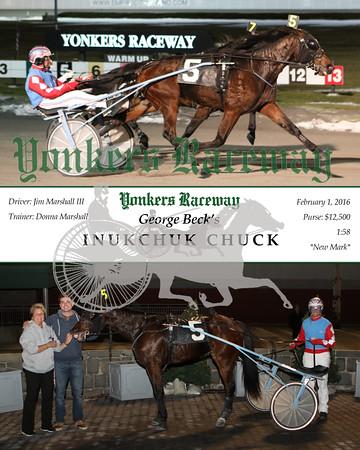 20160201 Race 4- Inukchuck Chuck