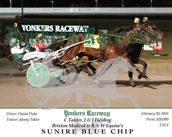 20160220 Race 7- Sunfire Blue Chip