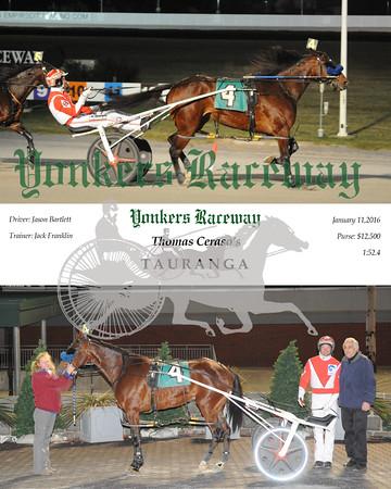 01112016 Race 8-Tauranga