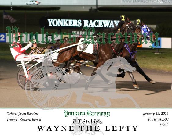 20160115 Race 1- Wayne The Lefty