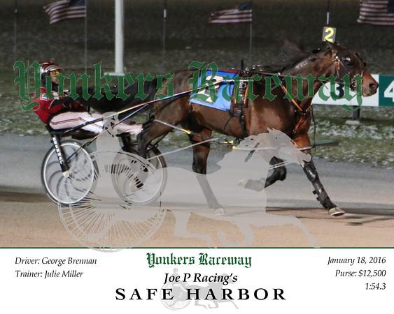 20160118 Race 7- Safe Harbor