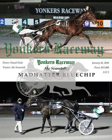 20160118 Race 6- Madhatter Bluechip