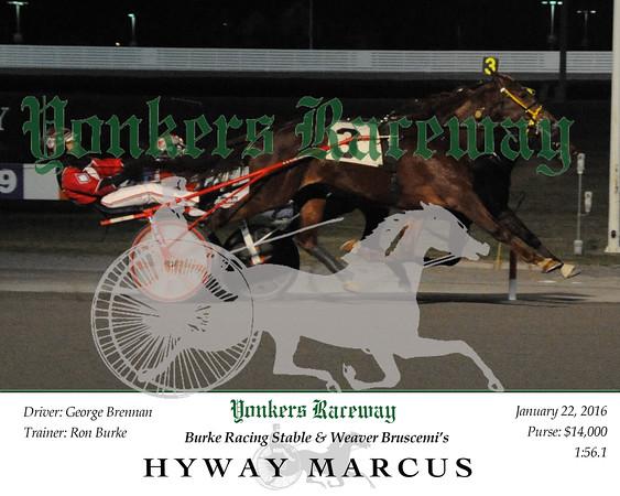 20160122 Race 7- Hyway Marcus