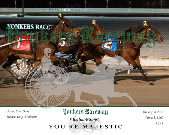20160130 Race 2- You're Majestic