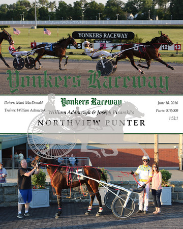 20160618 Race 2- Northview Punter