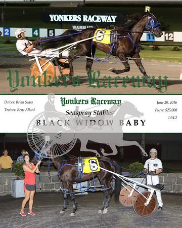 20160620 Race 11- Black Widow Baby