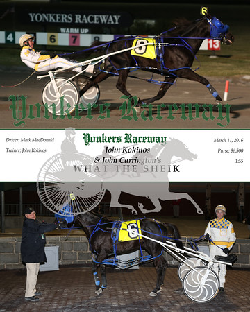 20150311 Race 3- What the Sheik