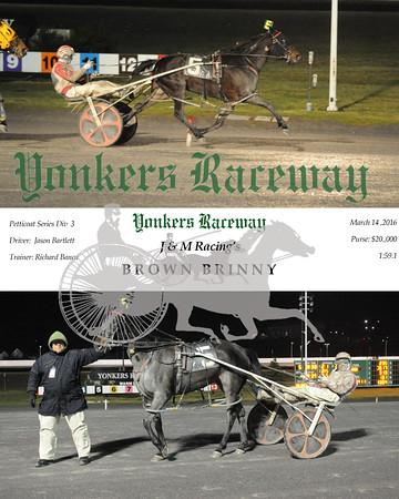 03142016 Race 5- Brown Brinny