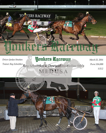 20160325 Race 11- Dewycolorintheline 2