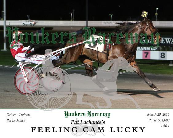 20160328 Race 3- Feeling Lucky Cam 2