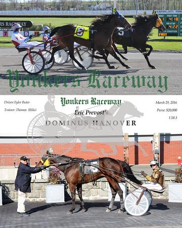 032916 Race 11-Dominus Hanover