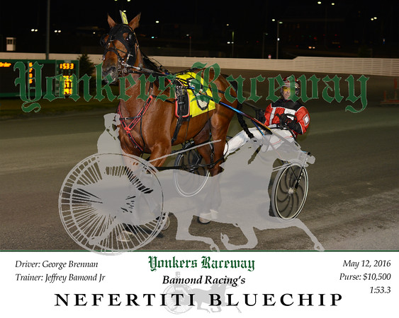 20160512 Race 6- Nefertiti Bluechip 2
