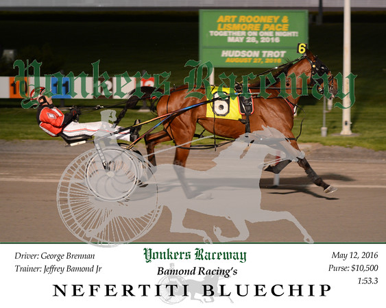 20160512 Race 6- Nefertiti Bluechip 1