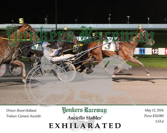 20160513 Race 11- Exhilarated