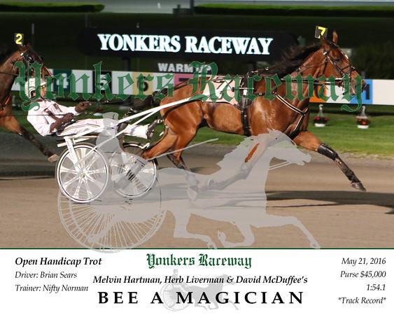 20160521 Race 6- Bee A Magician 2