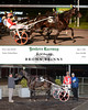 20160505 Race 6- Brown Brinny