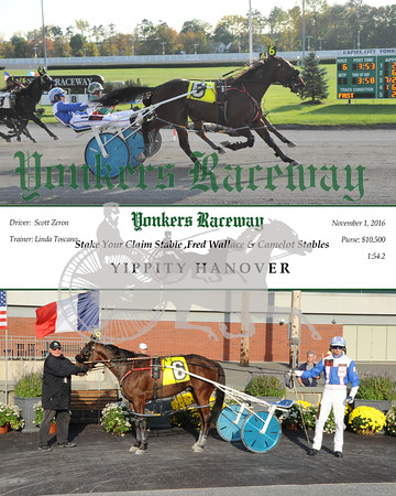 11012016 Race 6-Yippity Hanover