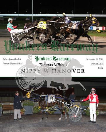 20161111 Race 1- Nippy W Hanover