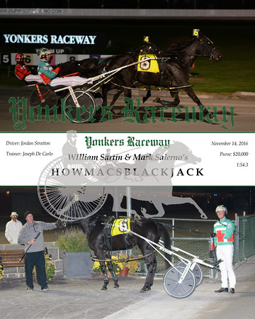 20161114 Race 6- Howmacsblackjack