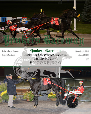 20161114 Race 7- Encore Deo