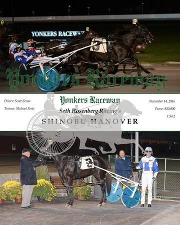 20161114 Race 10- Shinobu Hanover