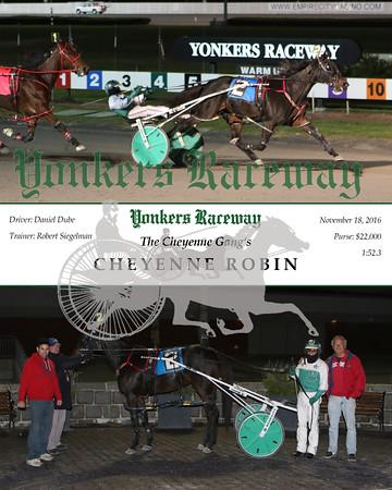 20161118 Race 10- Cheyenne Robin