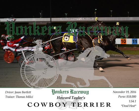 20161119 Race 6- Cowboy Terrier