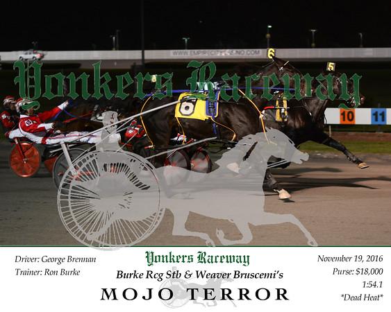20161119 Race 6- Mojo Terror
