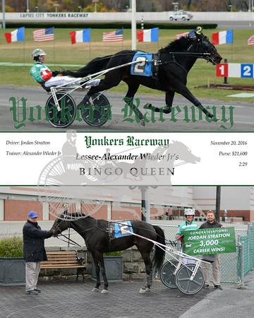 20161120 Race 2- Bingo Queen