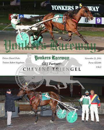 20161121 Race 7- Cheyenne Triengel