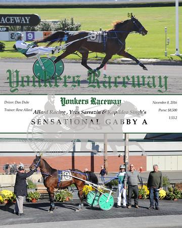 11082016 Race 1-Sensational Gabby A