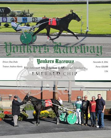11082016 Race 3-Emerald Chip