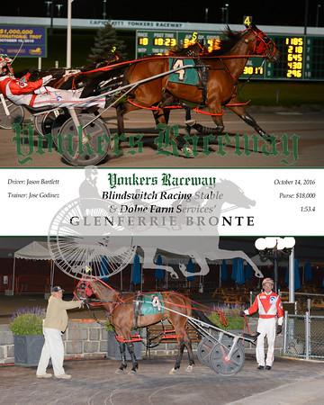20161014 Race 10- Glenferrie Bronte N