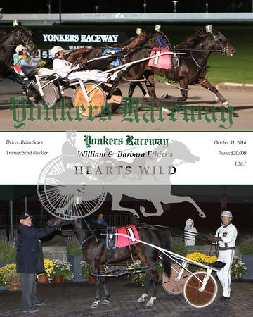 20161031 Race 7- Hearts Wild