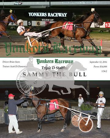 20160912 Race 4- Sammy The Bull N