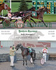 20170428 Race 2- Silver Credit