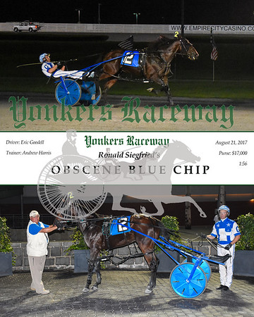 20170821 Race 7- Obscene Blue Chip