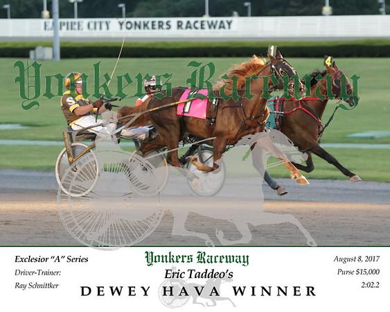 20170808 Race 3- Dewey Hava Winner 2