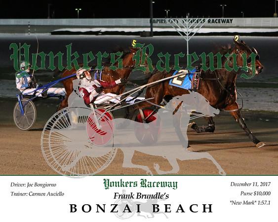 20171211 Race 1- Bonzai Beach 2
