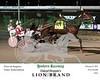 20170221 Race 2- Lion Brand 2