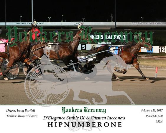 20170221 Race 1- Hipnumberone  2jpg