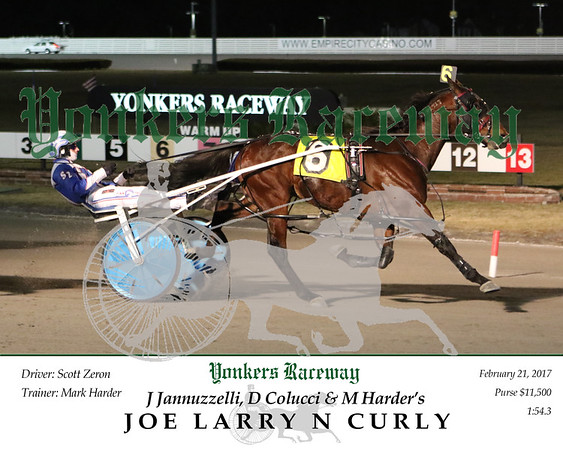 20170221 Race 5- Joe Larry N Curly