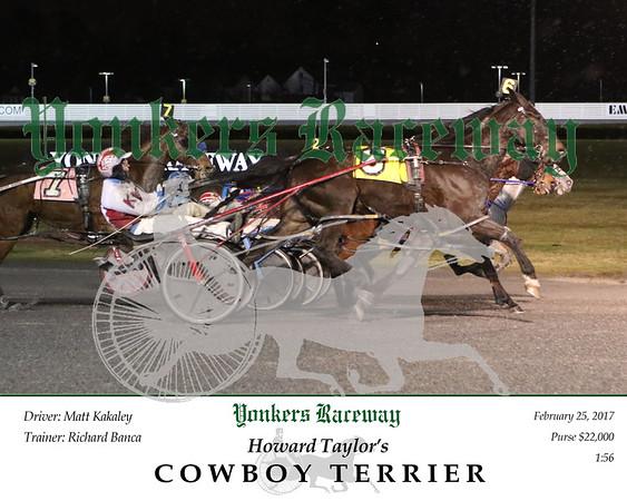 20170225 Race 2- Cowboy Terrier