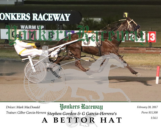 20170228 Race 5- A Bettor Hat