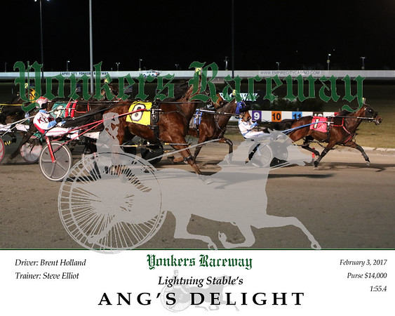 20170203 Race 6- Ang's Delight 2