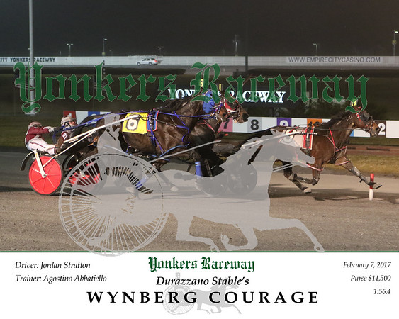 20170207 Race 1- Wynberg Courage N