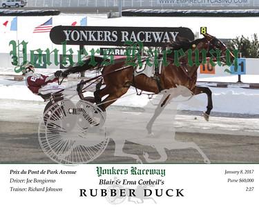 20170108 Race 8- Rubber Duck
