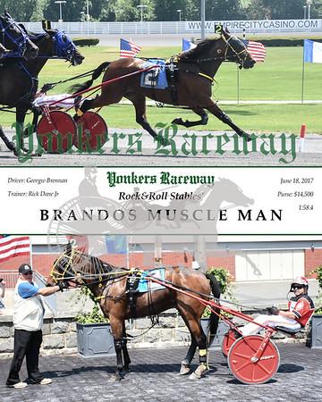 20170618 Race 6- Brandoos Muscle Man